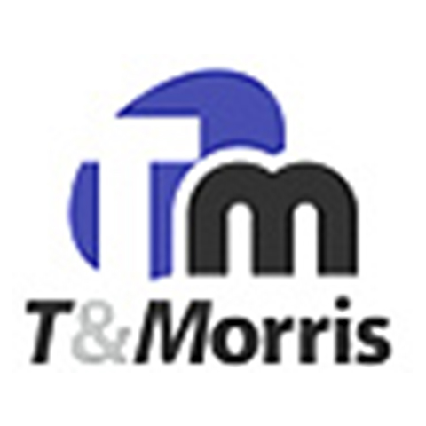 T&MORRIS VISA+ CONSULTING LTD.
