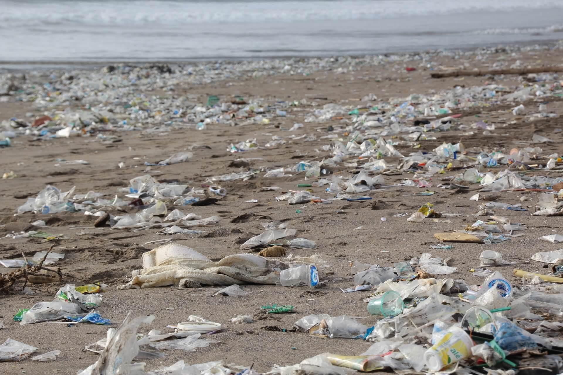 海洋ゴミ 廃プラ