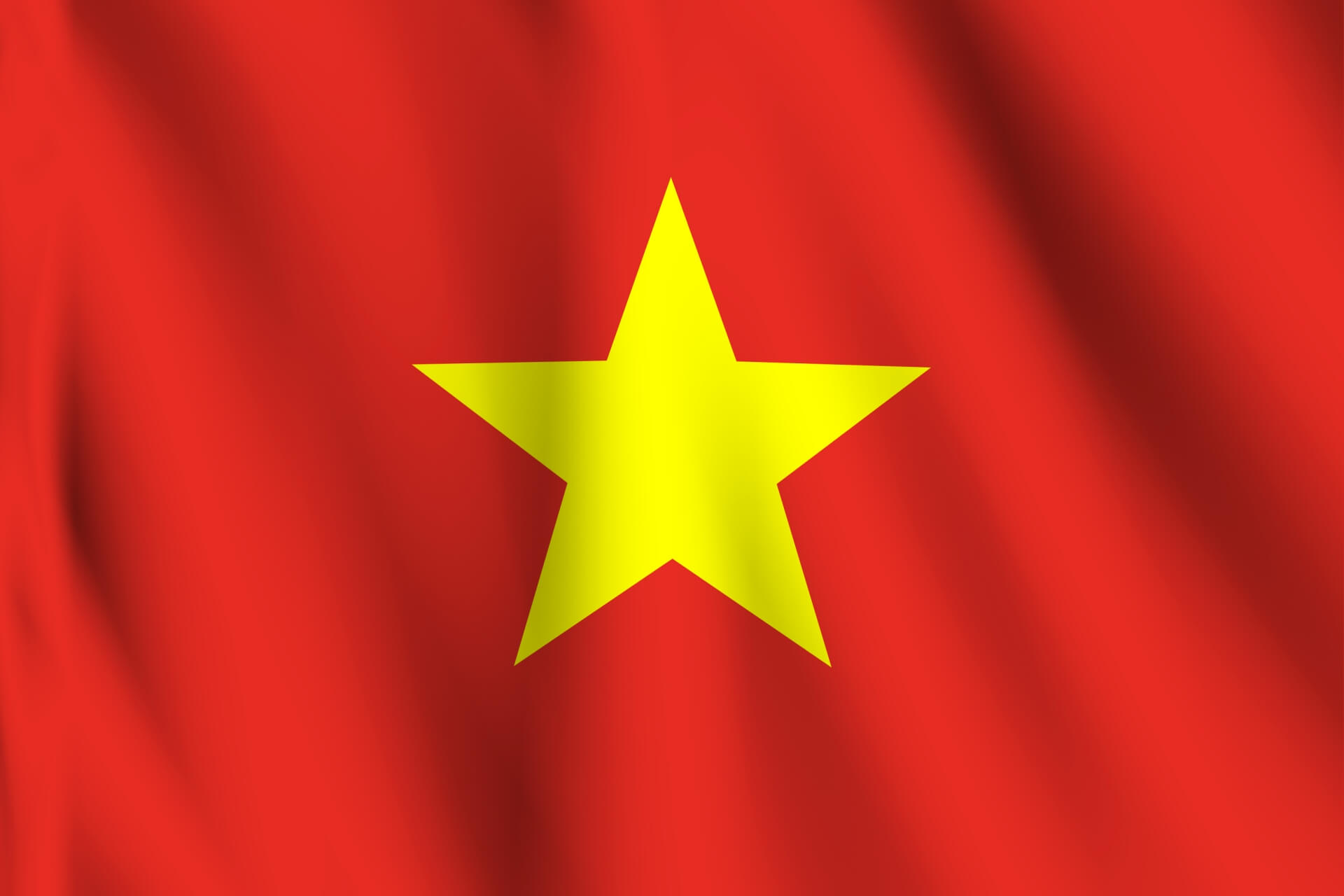 ベトナム国旗 (1)