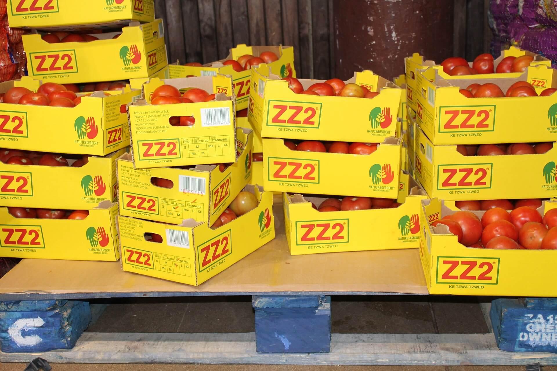 食品の輸入は誰でもできる!? | 食品輸入に必要な手続き・検査・流れを解説